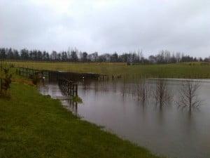 Flood 2016 (9)